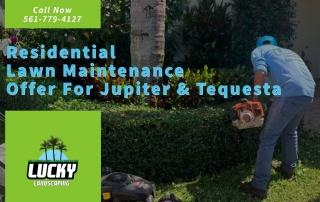 Lawn Maintenance in Jupiter