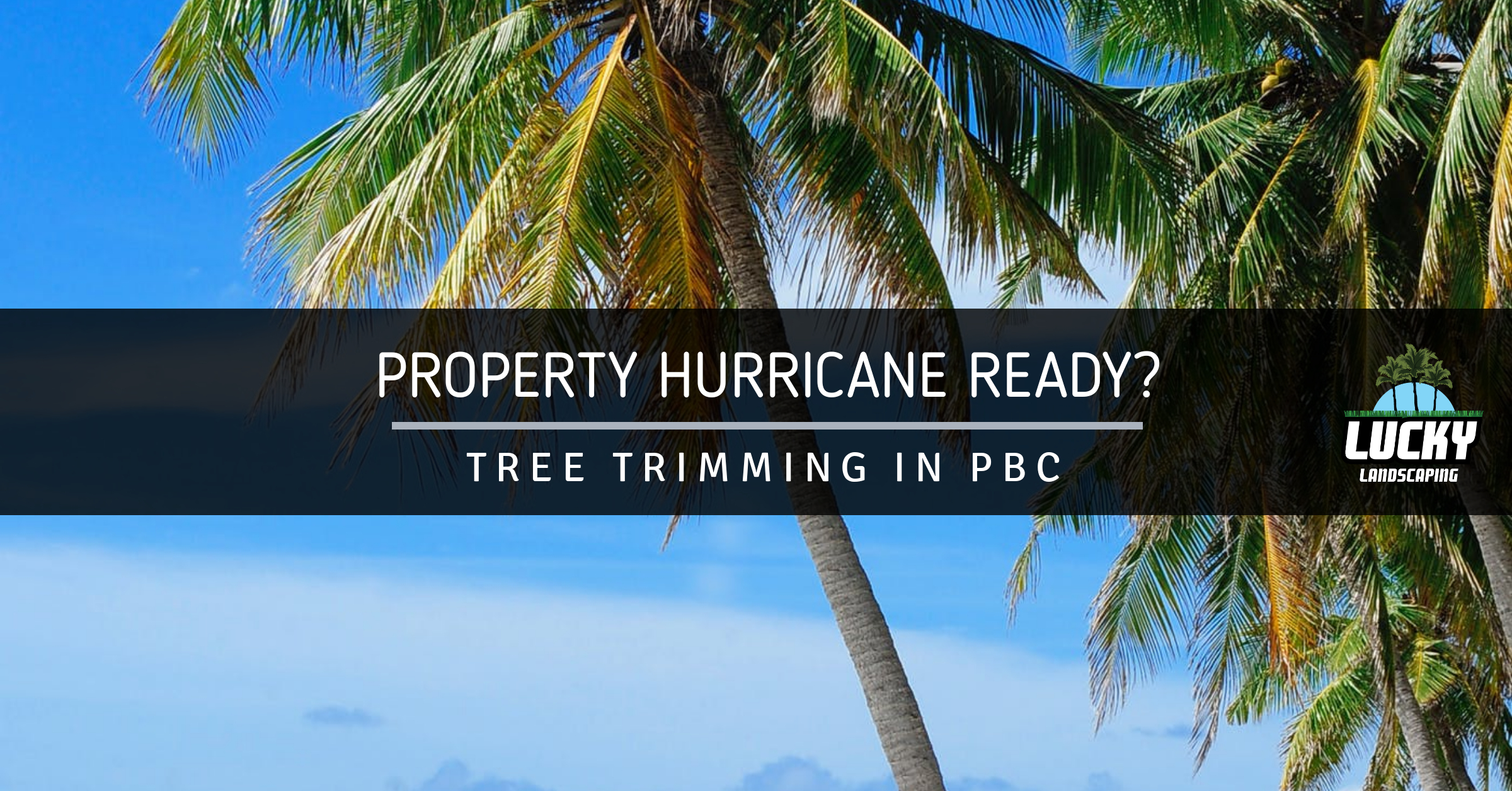 Palm Beach County Tree Trimming